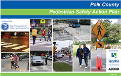Pedestrian Safety Action Plan
